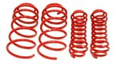Lowering Spring Kits